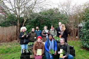 seed swapping day Lewisham Gardens