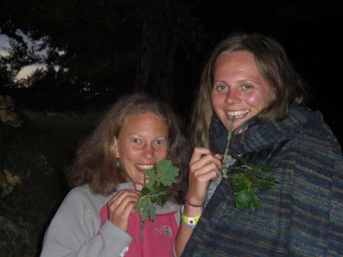 oak-toothbrush-bud-gea-foraging-walks-16-158
