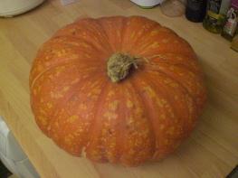pumpkin-17